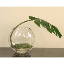 Waterlook Philodendron Leaf, Lotus Pods Desk Top Plant in Decorative Vase