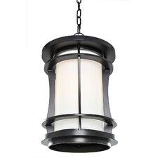 Mason 1 Light Outdoor Pendant