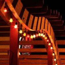 Medium Base String Light