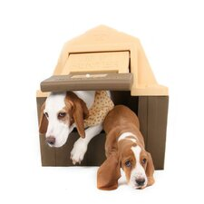 Dog Palace Hunter Dog House