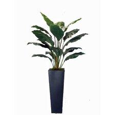 Faux Spathiphyllum Floor Plant in Planter