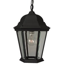 Straight Glass 1 Light Outdoor Hanging Lantern