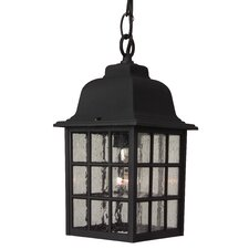 Grid Cage 1 Light Outdoor Hanging Lantern