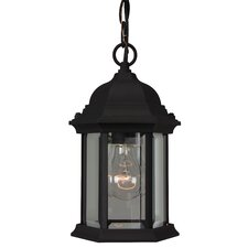 Hex Style 1 Light Outdoor Hanging Lantern