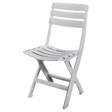 Queen Folding Dining Chair
