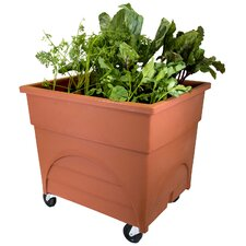 City Picker Rectangular Planter Box