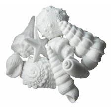 Porcelain Sea Shells 9 Piece Set
