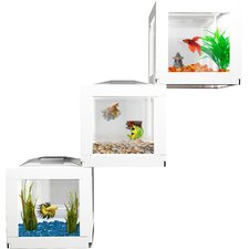 DecoCubes Terrarium (Set of 3)