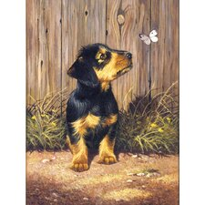 Painting by Numbers Junior Small Dachshund Pup Graphic Art (Set of 3)