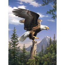 Paint By Numbers Screaming Eagle Painting