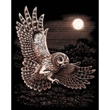 Oasis Barn Owl Scraperfoil