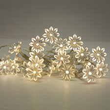 20 Light Fairy Lights