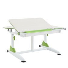 """40"""" W Writing Desk with Drawer"""
