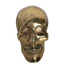 Small Skull Bust
