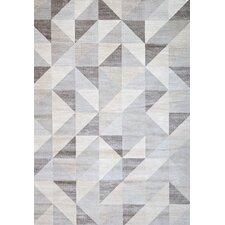Sonoma Colburn Gray & White Area Rug