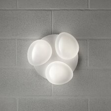 Sasso 3 Light Cluster Wall Sconce