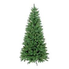 New Duchess Slim Spruce Christmas Tree