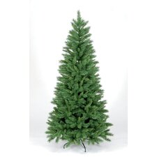 New Duchess Spruce Christmas Tree