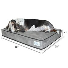 """Serenity Lounge Dog Bed- Solid 4"""" Memory Foam"""