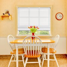 Light Filtering Cordless Fabric Roman Shade