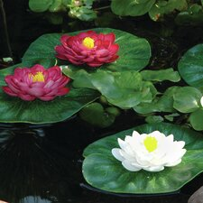 3 Piece Floating Lily Pad Set