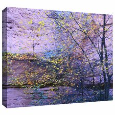 """Aravaipa Canyon Dusk"" by Dean Uhlinger Photographic Print on Wrapped Canvas"