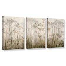 'Wildflowers Ivory' by Cora Niele 3 Piece Graphic Art on Wrapped Canvas Set