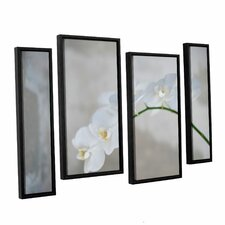 'White Orchid' by Elena Ray 4 Piece Framed Photographic Print on Canvas Set