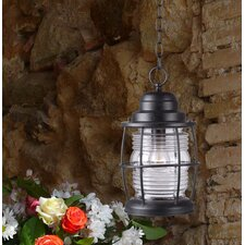 Port 1 Light Outdoor Hanging Lantern
