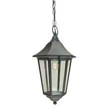 Valencia 1 Light Outdoor Hanging Lantern