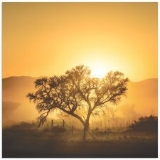 'Golden Sunrise' by Piet Flour Photographic Print