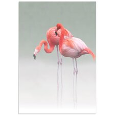 'Just We Two Flamingos' by Anna Cseresnjes Photographic Print