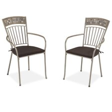 Glen Rock Dining Arm Chair with Cushion (Set of 2)