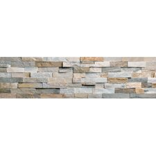 Beach Ledge Stone Split Face Random Sized Wall Cladding Mosaic in Multi Color