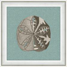 Sea Creatures II Framed Graphic Art