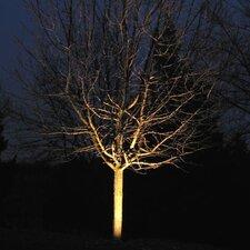Progressive LED Spot Light