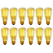 Vintage Edison 40 Watt (2700K) S60 Squirrel Cage Incandescent Filament Light Bulb (Set of 12)