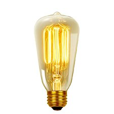 Vintage Edison (2700K) S60 Squirrel Cage Incandescent Filament Light Bulb