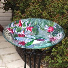 Hummingbird Beauty Bird Bath