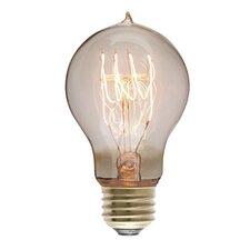 40W 130-Volt Incandescent Light Bulb