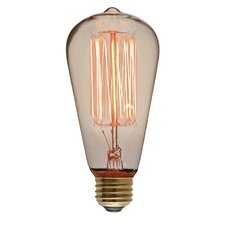 40W 110-130-Volt E26 Light Bulb