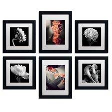Floral 6 Piece Framed Photographic Print Art Set