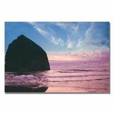 """Canon Beach II"" by Ariane Moshayedi Photographic Print on Canvas"