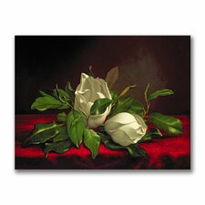 """""""Magnolia"""" by Martin Heade Painting Print on Canvas"""