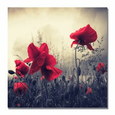 'Red For Love' by Philippe Sainte-Laudy Framed Photographic Print on Wrapped Canvas