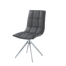 Apollo Side Chair (Set of 2)