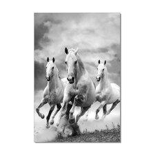 Mustangs Graphic Art