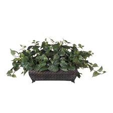 Artificial Philo Ledge Desk Top Plant in Planter