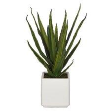 Artificial Aloe Succulent Desktop Plant in Planter