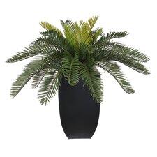 Artificial Cycas Palm Floor Plant in Planter